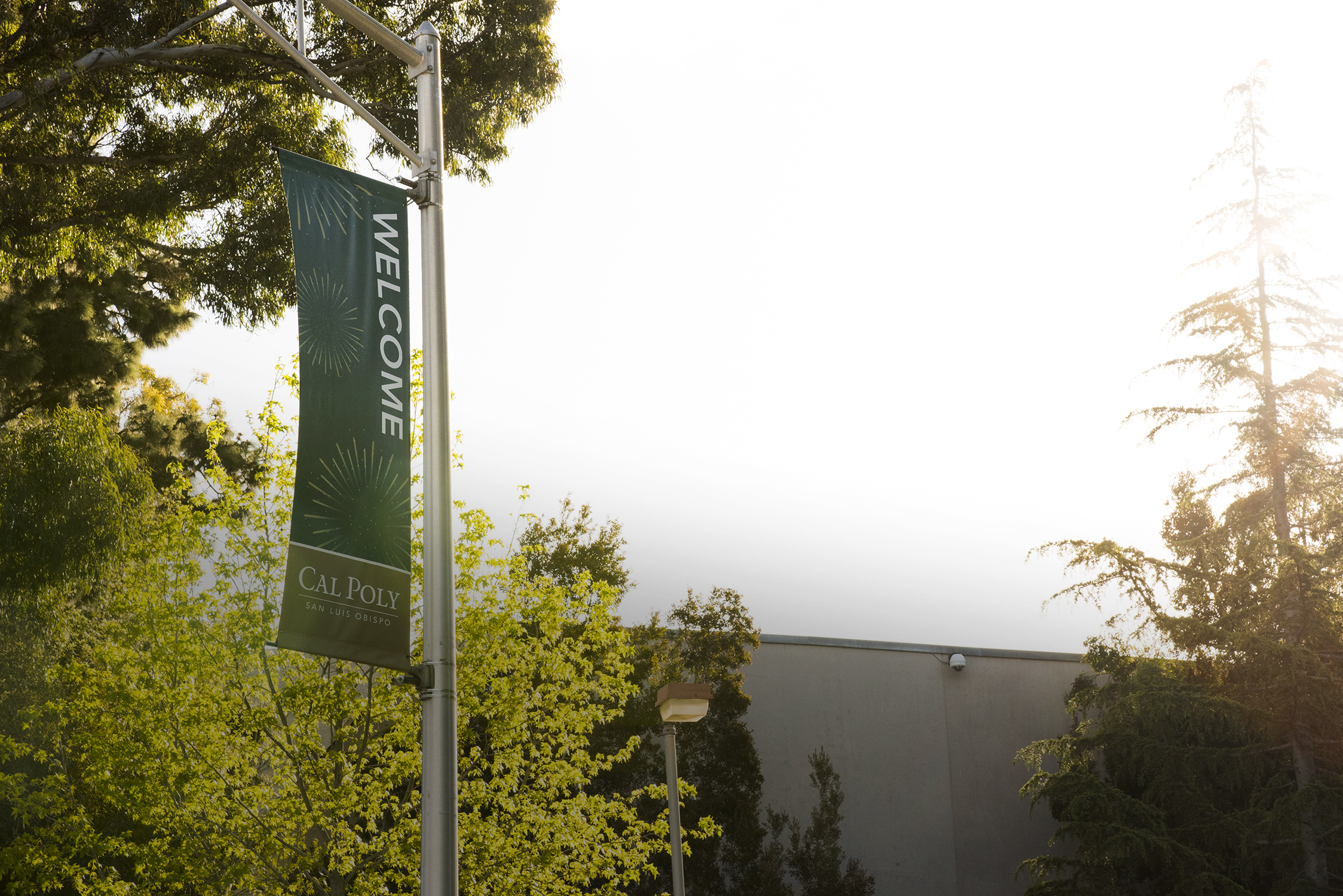 A lamp post hanging Cal Poly banner