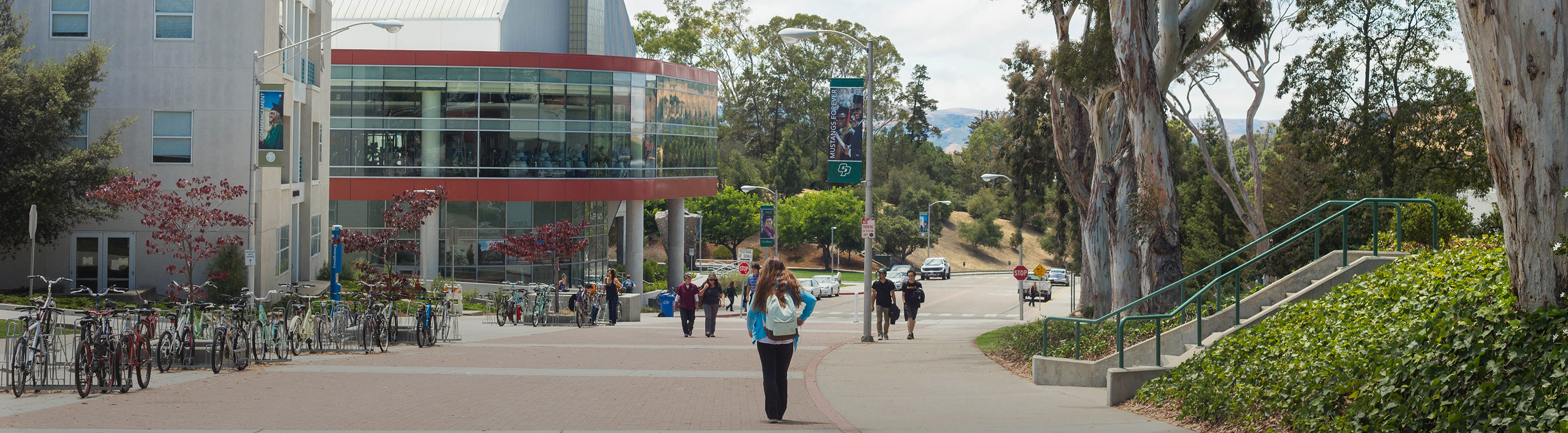 Professional certificate programs graduate education cal poly professional certificate programs 1betcityfo Choice Image